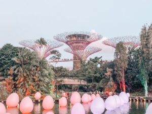 gardens by the bay singapotre